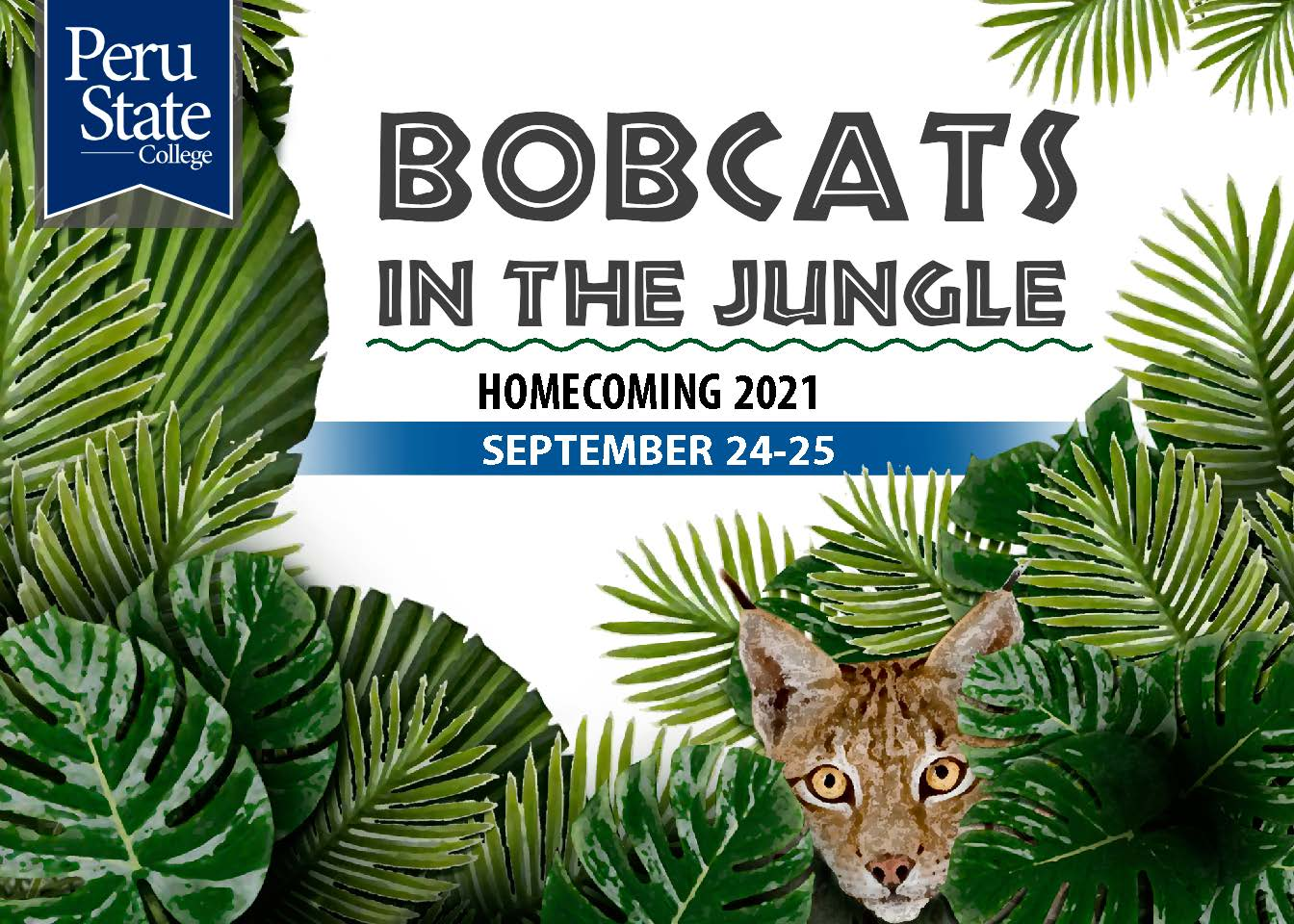 Bobcats in the Jungle